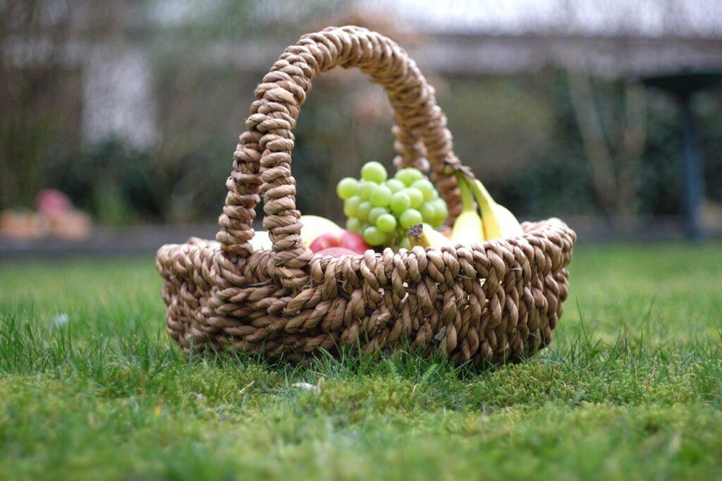 natur-apfel- früchte